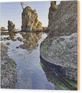 Pig And Sows Rock In Garibaldi Oregon At Low Tide Vertical Wood Print