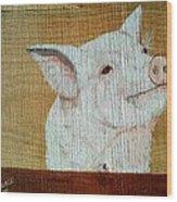 Pig Smile Wood Print