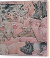 Pig Spread Wood Print by Ditz