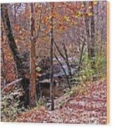 Pigeon Forge River Wood Print