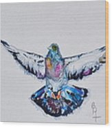 Pigeon In Flight Wood Print