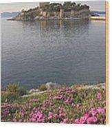 Pigeon Island Kusadasi Turkey  Wood Print
