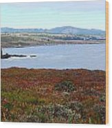Pigeon Point Bay Wood Print