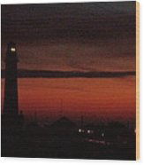 Pigeon Point Light And Friends Wood Print