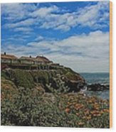 Pigeon Point Lighthouse Painted Wood Print