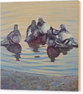 Pigeon Talk Wood Print