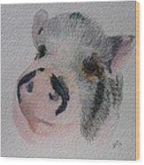 Piggy Pet Portraits Original Watercolor Memorial Made To Order Wood Print