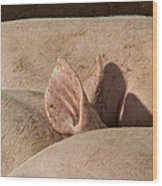 Piglets Napping 2 Wood Print