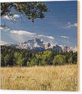 Pikes Peak And Snow Wood Print