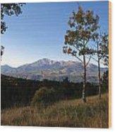 Pikes Peak Landscape Wood Print