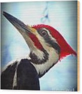 Pileated Close Up Wood Print