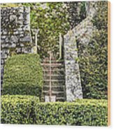 Pilgrim's Steps Wood Print