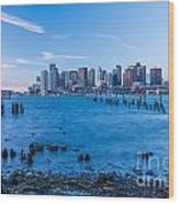 Pilings On Boston Harbor Wood Print