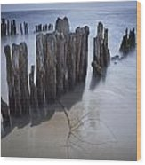 Pilings On The Beach Along A Lake Michigan Shore Wood Print