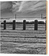 Pillared Bridge Wood Print