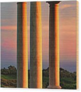 Pillars Of Life Wood Print