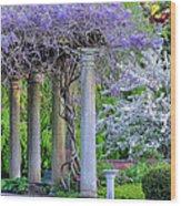 Pillars Of Wisteria Wood Print