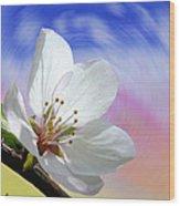 Pin Cherry Swirl Wood Print