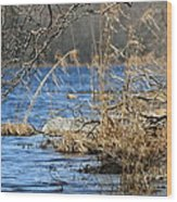 Pine Acres Lake Blues  Wood Print