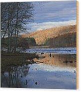 Pine Acres Lake Reflections  Wood Print