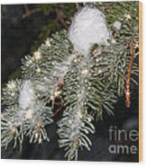 Pine Branch With Ice And Stars Wood Print