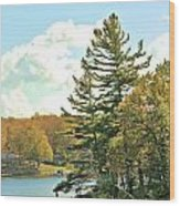 Pine By The Water Wood Print
