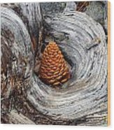 Pine Cone In A Knot  Wood Print