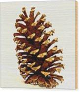 Pine Cone On White Wood Print