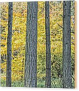 Pine Forest In The Autumn Wood Print