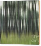 Pine Forest.blurred Wood Print