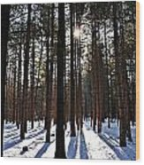 Pine Grove Vii Wood Print