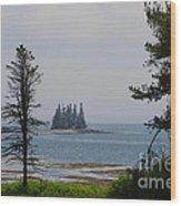 Pine Island Wood Print