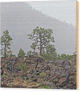 Pine On Lava Wood Print