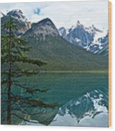 Pine Over Emerald Lake Reflection In Yoho National Park-british Columbia-canada Wood Print