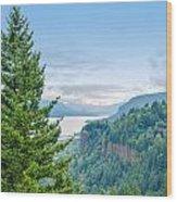 Pine Tree And Columbia River Gorge Wood Print