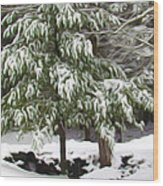 Pine Tree Covered With Snow 2 Wood Print