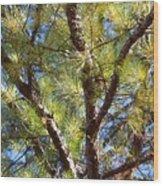 Pine Tree Glow 2014 Wood Print