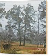 Pine Trees In Mist - Digital Paint 1 Wood Print