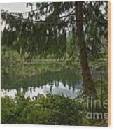 Pine Trees Over Starvation Lake Wood Print