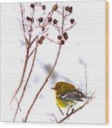 Pine Warbler-img-2143-001 Wood Print