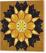 Pineal Breakthrough Wood Print