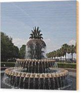 Pineapple Fountain Charleston Wood Print