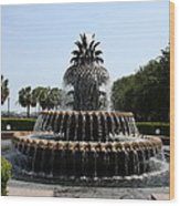 Pineapple Fountain Charleston River Park Wood Print