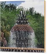 Pineapple Fountain Wood Print by Skip Willits