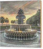 Pineapple Fountain Sunset Wood Print