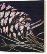Pinecone In Black Wood Print