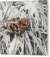Pinecone In Snow Wood Print
