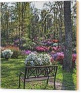 Pinecrest Gardens Wood Print