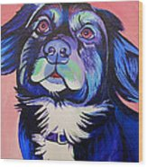 Pink And Blue Dog Wood Print