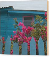 Pink And Blue House Wood Print